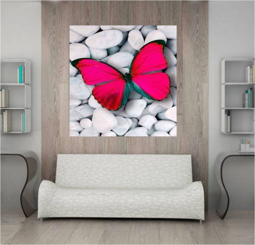 Pink Butterfly on White Rocks in 6 Sections